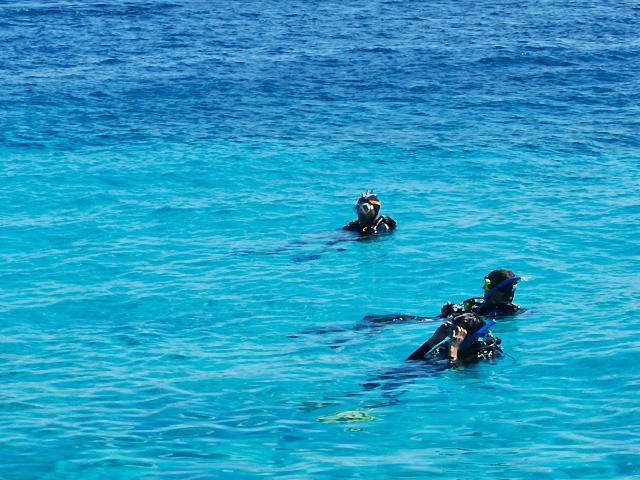 Koralleninsel Klein Bonaire