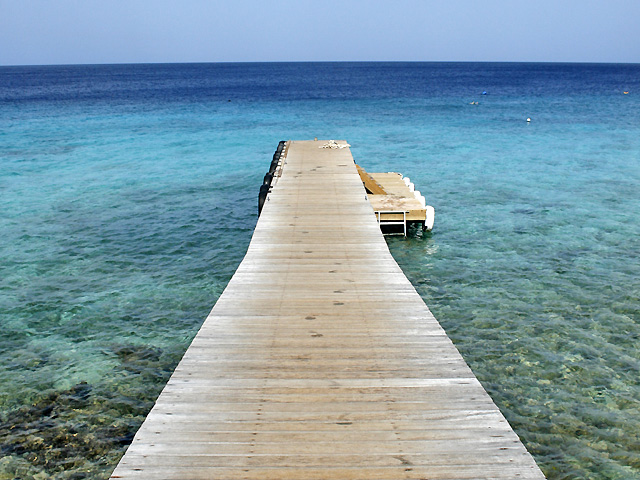 Alles über Bonaire